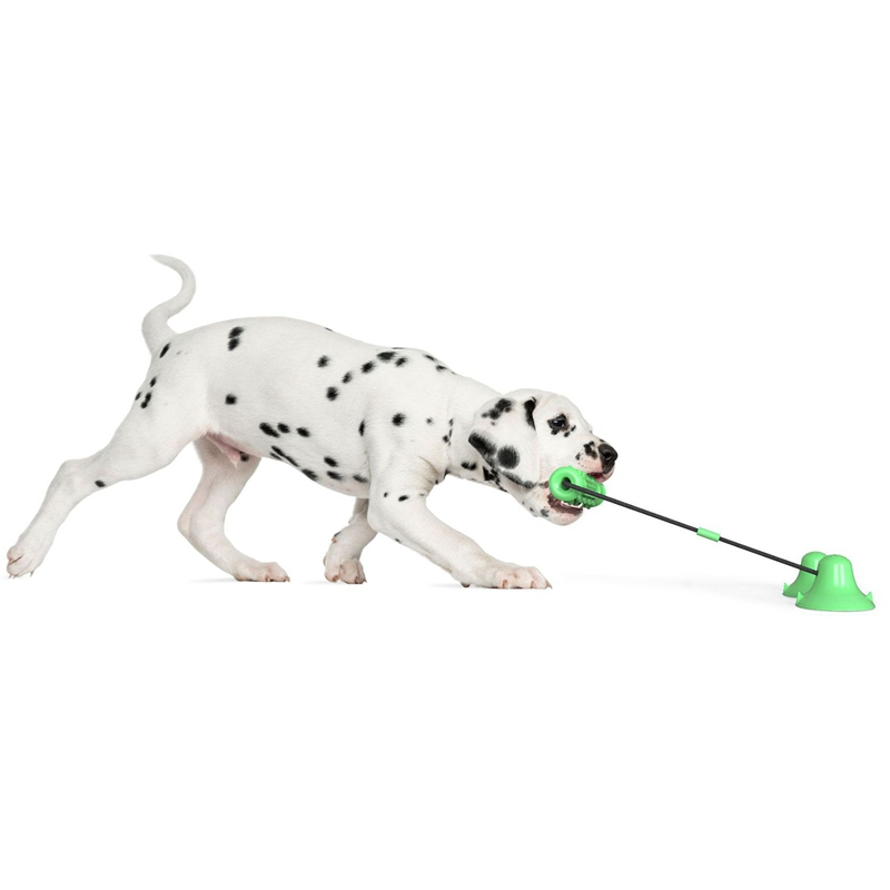 Dog-Molar-Toy-Multifunction-Pet-Chew-Toys-Double-Suction-Cup-Dog-Pull-Ball-F3I2 thumbnail 11