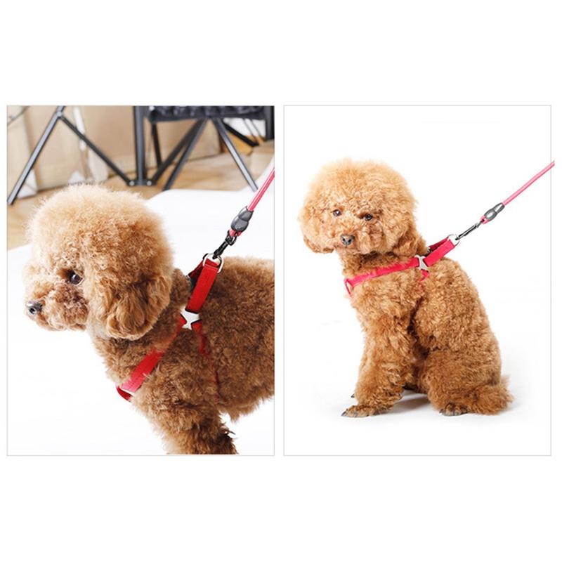 Indexbild 6 - Hundeleine-Nylon-Haustierleine-fuer-Hunde-und-Katzenlauf-oder-Trainingshal-J4P6