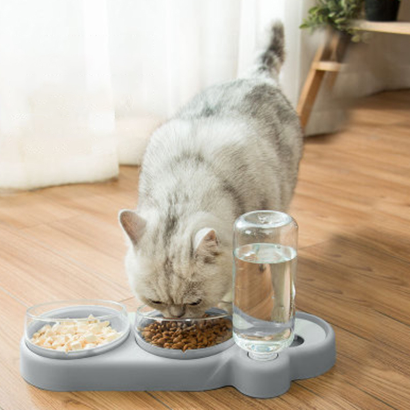 thumbnail 21 - Practical-Pet-Automatic-Feeder-Cat-Dog-Food-Dispenser-Water-Drinking-Bowl-F-N5F4